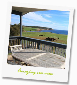 seaview of waves and wildlife cottages - Accommodation Kangaroo Island