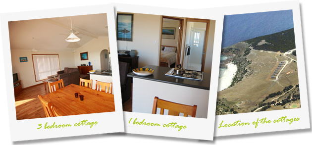 cottage-collage2